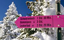 Winter trail sign
