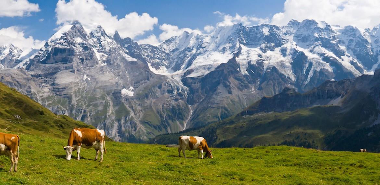 hike Jungfrau Switzerland