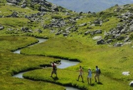 Hikers exploring Swiss trails