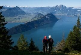 FAQ  Alpenwild Experience
