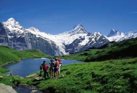 Best of the Swiss Alps