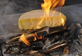 Cheeses of Switzerland