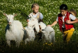 Children with goats in Appenzell