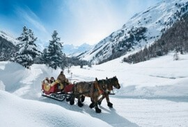 Horse-drawn sleigh ride in the snow
