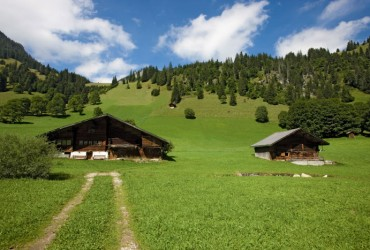 Diemtigtal Nature Park in the Bernese Oberland. A farm house at Meniggrund.