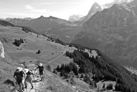 Bernese Oberland Traverse 2018 | Photo by guide Matthew