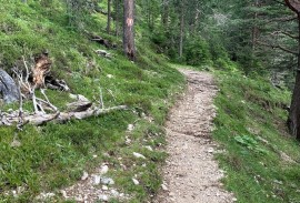 Trail in the Dolomites   Photo by Macie Duncan