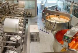 Gruyere Cheese Factory; Photo Credit: Robyn Damon