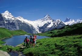 Best of Swiss Alps