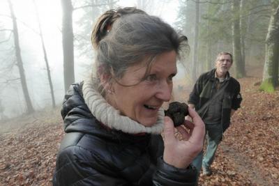 Truffle Hunting in Switzerland