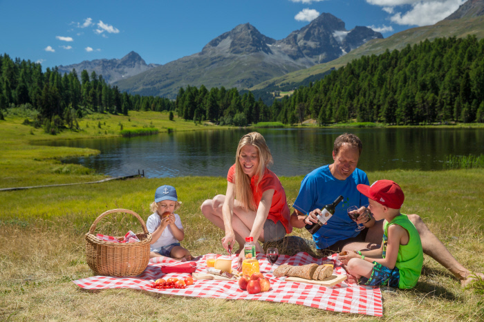 Picnic In The Alps