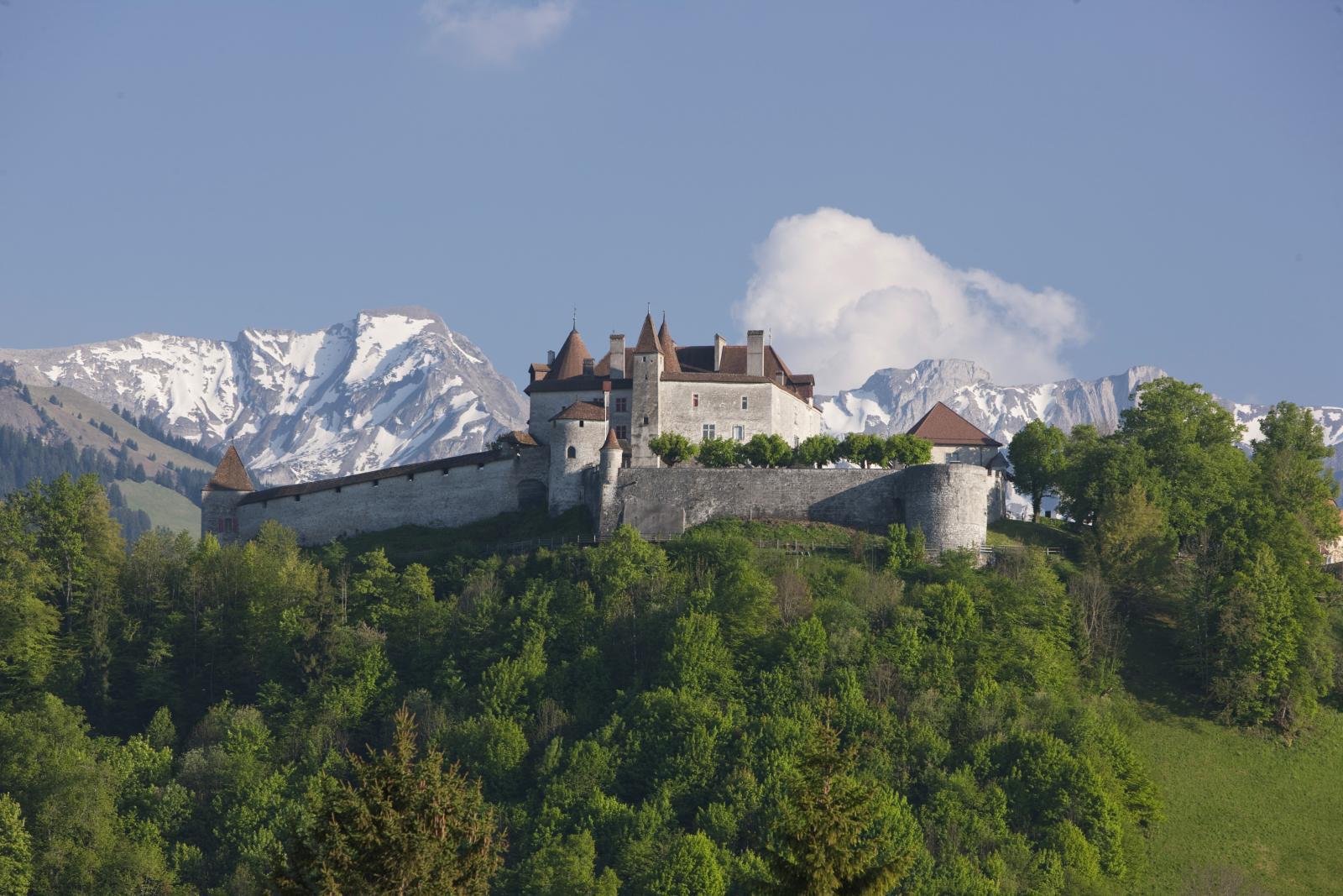 Castle in Switzerland