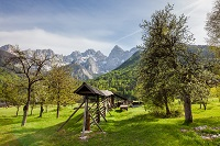 Wooden hayracks in Slovenia