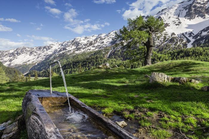 water trough in Switzerland