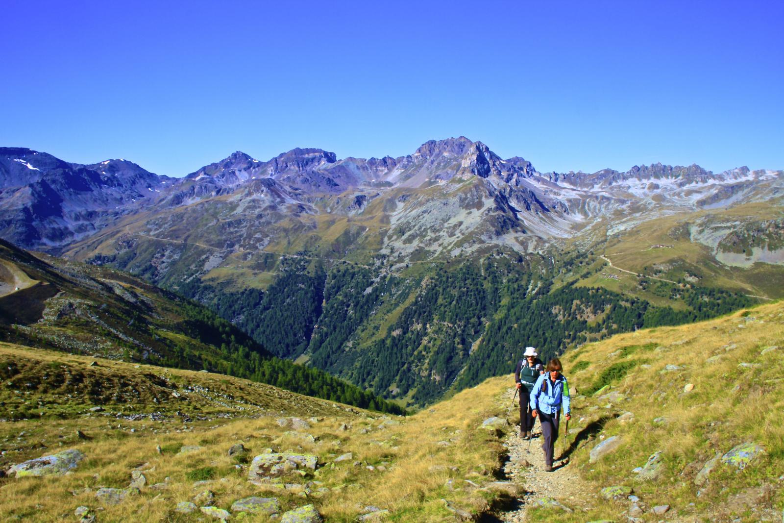 Hikers in the Swiss Alps